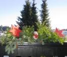 Wohnung Königsloh: Balkon
