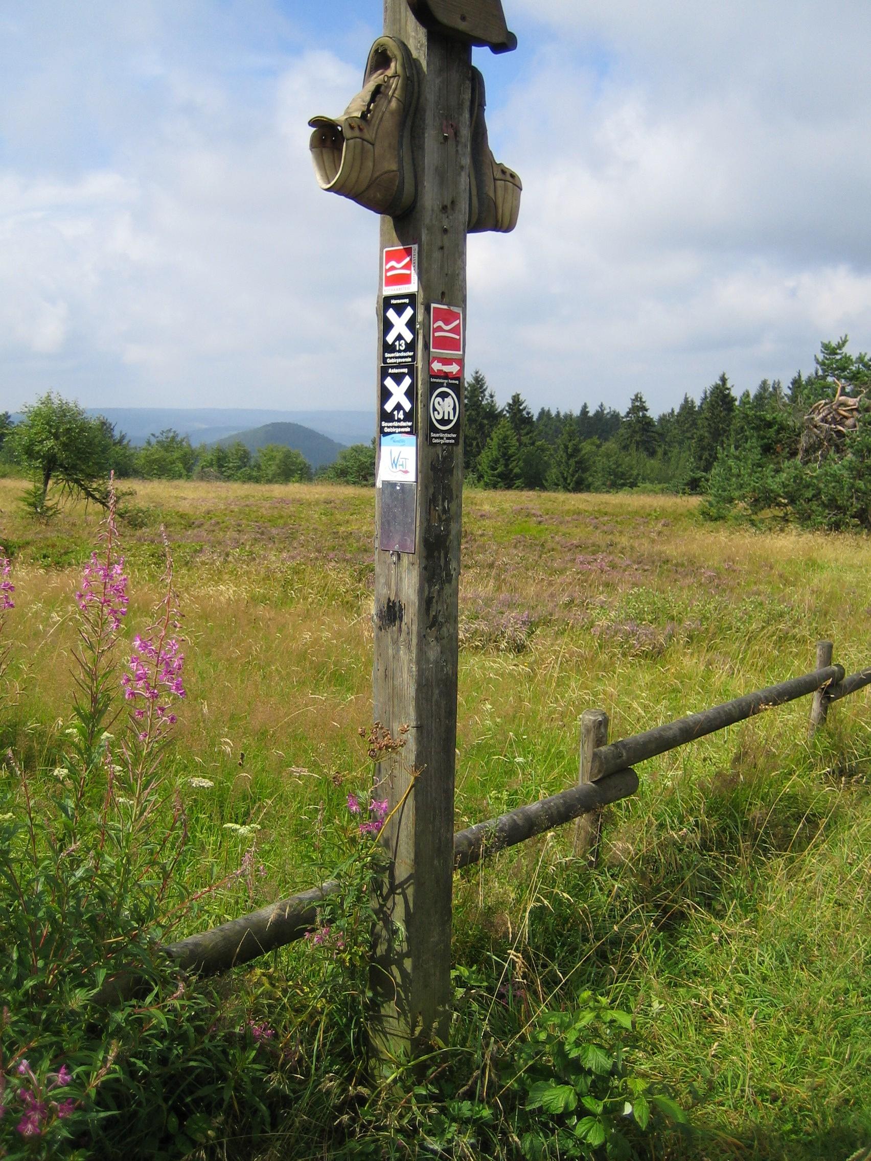 """Wandern Sie auf den regionalen Wanderrouten """"Rothaarsteig"""" und """"Sauerland Höhenflug"""""""
