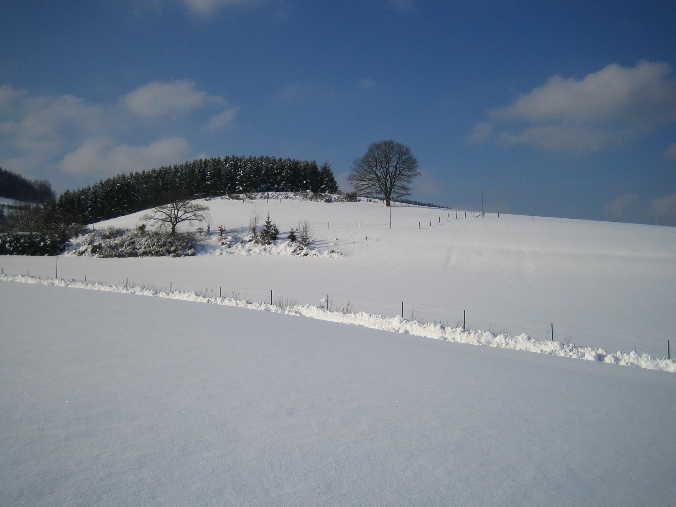 Blick aus FeWo Steinschab im Winter