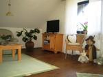 Wohnung Steinschab: Wohnzimmer II
