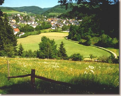 Am Südhang des Rothaargebirges, eingebettet in ein Wiesental,  liegt Liesen.